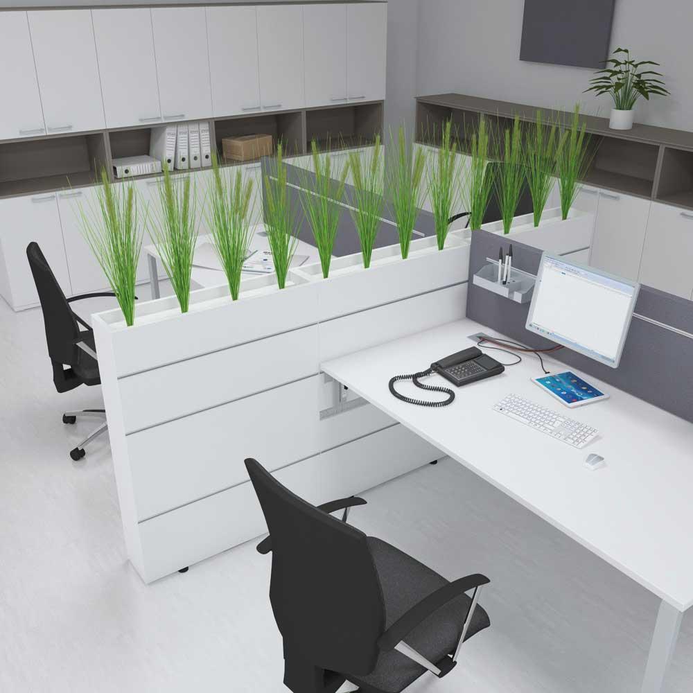 showroom49